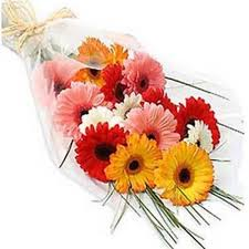 flowers gift natrual fresh bunch of gerberas flowers gift 130 flowers