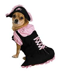 Extra Large Dog Halloween Costumes Pirate Pet Costumes