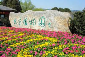 Beijing Botanical Garden Beijing S Botanical Garden In Springtime Ebeijing Gov Cn
