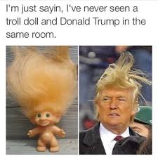 Top 10 Memes - top 10 donald trump hair memes terrific top 10