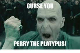 Platypus Meme - curse you perry the platypus meme on me me