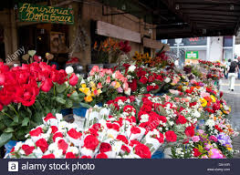 Flower San Jose - flower shop san jose costa rica stock photo royalty free image