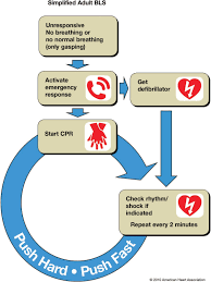 anaesthesia today aha cpr guidelines 2010