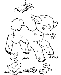 animal babies coloring pages coloring