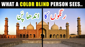 what a color blind person sees color blindness in urdu youtube