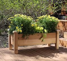 balkon hochbeet hochbeet balkon selber bauen bepflanzen holz margeriten