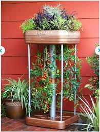 109 best the garden images on pinterest gardening garden and plants