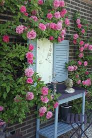 Shabby Chic Garden by 222 Best Garden Ideas Images On Pinterest Gardening Plants And
