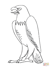 mexican golden eagle coloring page murderthestout