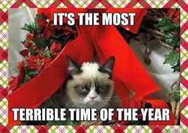 Cute Christmas Meme - animals and christmas funny animal meme collection 14 pictures