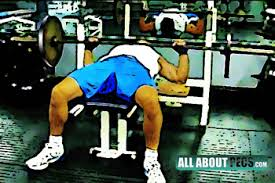 Chest Flat Bench Press The Essential Chest Workout Equipment Your Gym Must Have