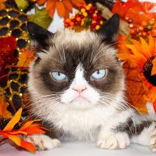 happy thanksgiving grumpy cat