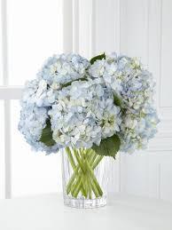 White Hydrangea Centerpiece by Best 20 Blue Hydrangea Ideas On Pinterest Blue Flowers Blue