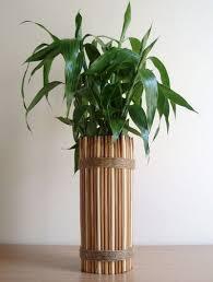 Decorative Dowel Rods 36 Best Dowel Rods Images On Pinterest Garden Ideas Live And