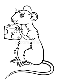 coloring pages animals cute mouse stock vector image