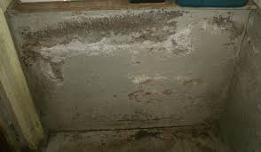 Cement Walls In Basement by Wet Basement Seattle Water In The Basement Flooding Or A Wet Crawl