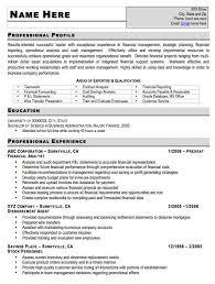 C Level Executive Assistant Resume Sample 28 C Level Resume Examples Executive Resumes Examples