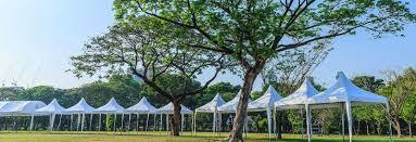 Cheap Lights Mcallen Tx Tejas Events U0026 Tents Party U0026 Event Rentals South Tx