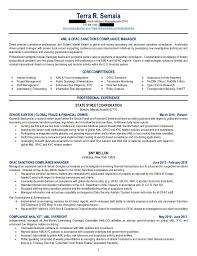 irs resume sample resume for promotion thesis theme review site