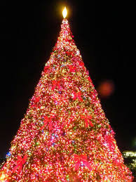 market commons tree lighting ceremony myrtle beach sc best christmas events myrtlebeachlife com