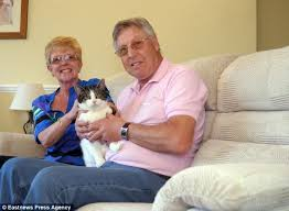 Cat Found In Owners Sofa After They Donated It To Charity Shop - Donating sofa to charity