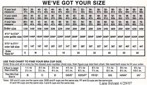 compare women u0027s plus size clothing sizes and more