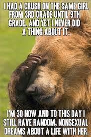 Confession Bear Meme - not a confession bear mild bear ashamed bear whatever album