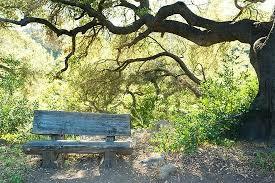 Botanic Garden Santa Barbara Local Santa Barbara Mtd Offers Drop And Up At Sbbg