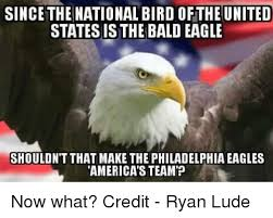 America Eagle Meme - since thenational bird ofthe united states is the bald eagle