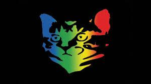 cat photo album whoopie cat whoopie cat 2016 new album