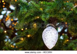 large light bulb on a tree large baubles on stock