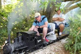 Florida travel steamer images Diggin 39 florida dirt toot toot forget pavers make tracks jpg
