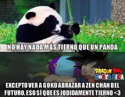 Memes De Pandas - zeno sama anime amino