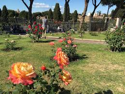 the not so rosy history of rome u0027s public rose garden the times