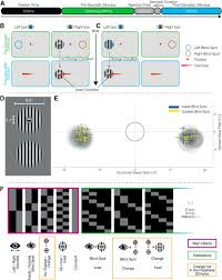 Predictions Of Visual Content Across Eye Movements And Their