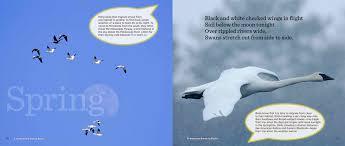 Minnesota book travel images Bedesign inc png