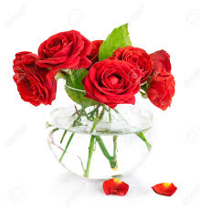 bunch red roses in glass vase isolated on white background stock
