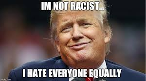 I Hate Everyone Meme - racist trump imgflip