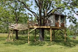 16 luxury cool tree house designs that forces you to say