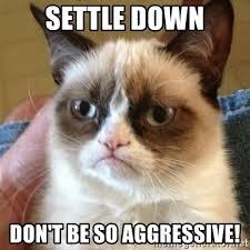 Settle Down Meme - settle down don t be so aggressive grumpy cat meme generator