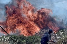 Wildfire Yukon by Wildfires Rage Across Greece The Atlantic