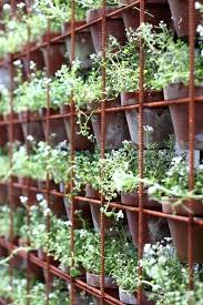 wall plant pots holders eco vertical garden grow wall vertical
