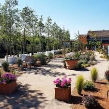 cura giardino healing garden l alzheimer si cura in giardino repubblica it