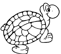 tortoise u2013 turtle coloring page wecoloringpage