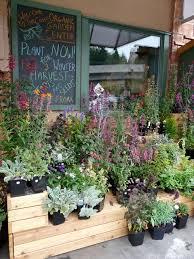 best 25 garden center displays ideas on pinterest florist