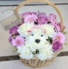 flower arrangements cute puppy flower arrangement spring crafts pinterest puppy