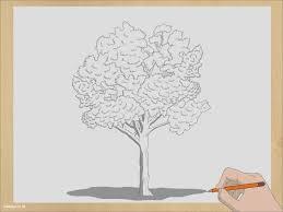 tutorial menggambar orang dengan pensil download gambar 3 cara untuk menggambar pohon wikihow gambar co id