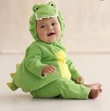 pit bull alligator costume halloween pinterest pit bull