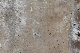 textured wall concrete wall texture dma homes 72315