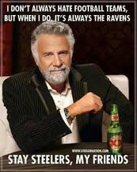 Steelers Vs Ravens Meme - pin by sassy susan roe on the one and only pittsburgh steelers 2013